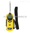 PGM-1600美国华瑞三合一气体/复合气体检测仪