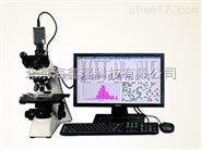 江苏NKT-T180静态颗粒图像仪