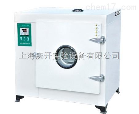 电热鼓风干燥箱(300度)