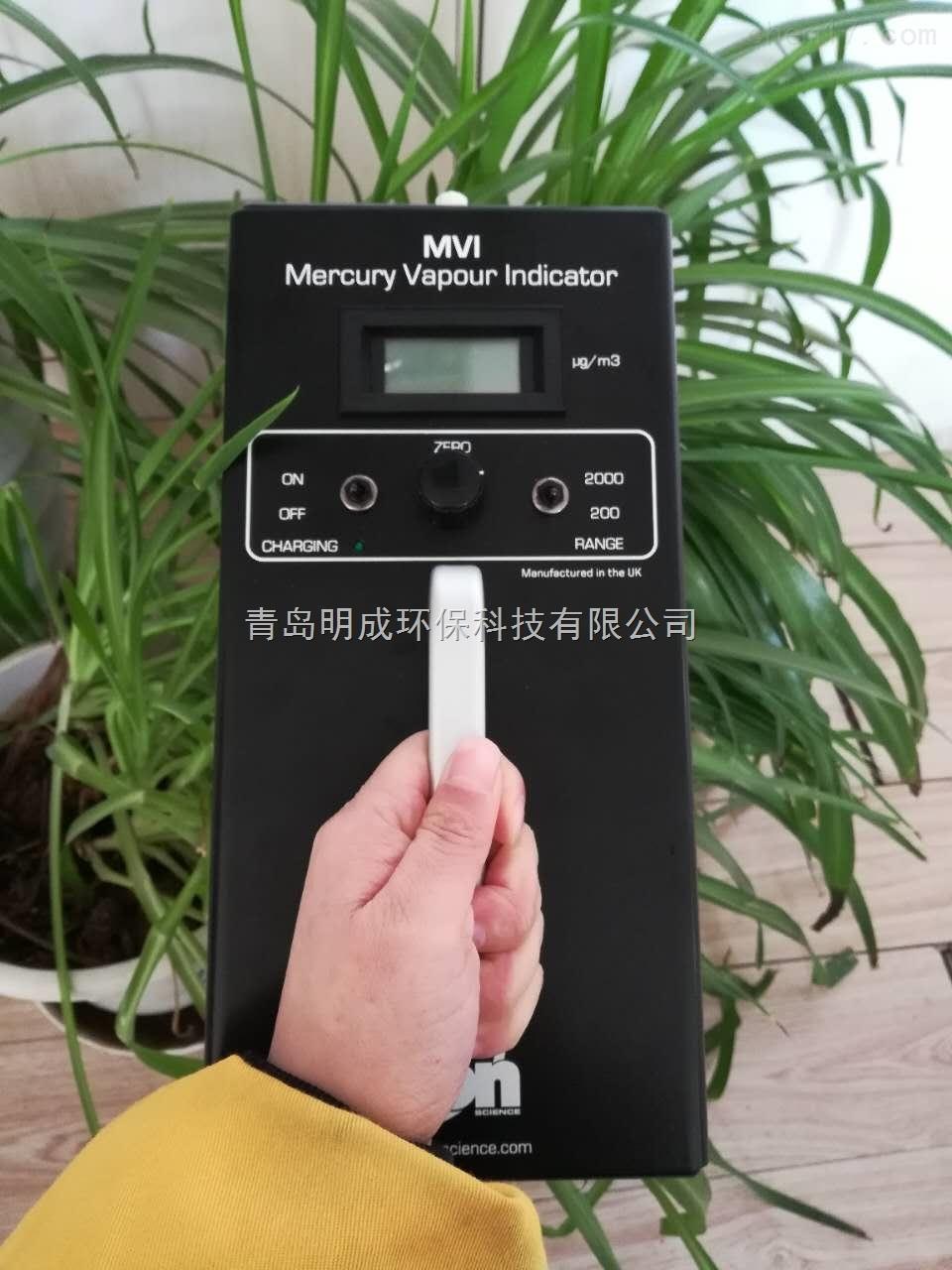 手持式MVI-DL便携式数据型汞蒸汽检测仪