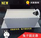 兔子固定箱  热源实验用具