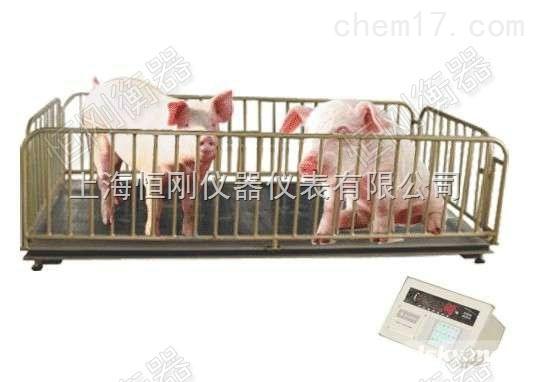 定製大量程打印動物秤,豬羊打印電子動物稱