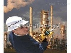 美华瑞可燃气体检测仪PGM-1820现货供应