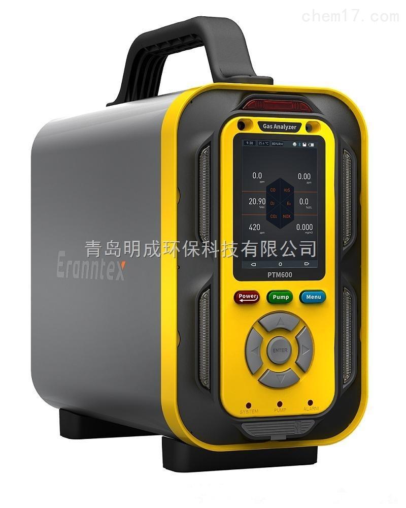 MC-800 青岛明成泵吸式采样多气体分析仪
