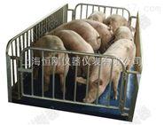家用称重小猪动物秤,小猪称重动物电子秤
