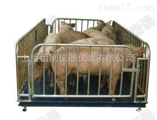 厂家直销猪羊牛动物秤,牛羊猪围栏动物称