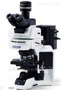 Olympus显微镜2017优秀代理商 奥林巴斯BX53