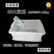 干样式大鼠笼 白鼠饲养笼具