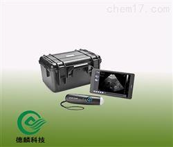 DLZD05-BCWXS无线背膘测孕仪