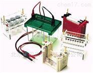 各种型号水平垂直电泳槽、电泳仪、电穿孔仪