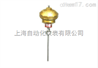 WRN2-130无固定装置式热电偶