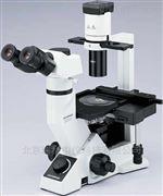 奥林巴斯Olympus显微镜CKX41的放大倍数