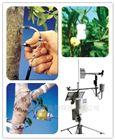 美国Dynamax-1K 植物生理生态监测系统