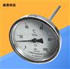 工业充油轴向耐震双金属温度计