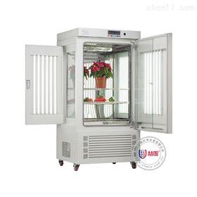 ZGC-300-I冷光源光照培养箱