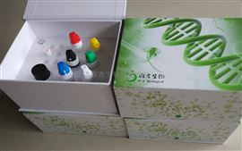 酵母质粒小量抽提试剂盒