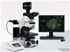自动扫描光学显微镜