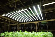桿式智能LED光源(2018-4)