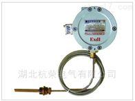 杭榮礦用WTYKB系列溫度