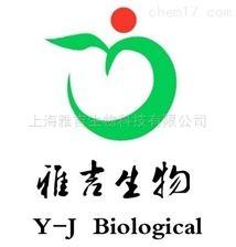 人血管内皮细胞生长因子(VEGF)Elisa试剂盒