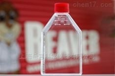TCT细胞培养瓶 175cm² 密封盖 40185