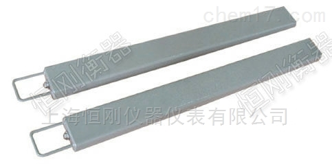 上海條形防腐智能地磅,防腐電子條形地磅