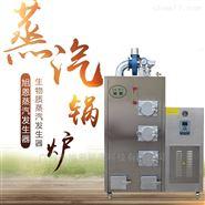 80公斤生物质蒸汽发生器图片