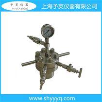 CJF-0.1小型高压反应釜