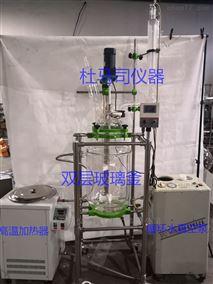 DFD-30L双层玻璃反应釜