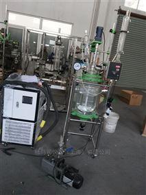 DFD-20L双层玻璃反应釜