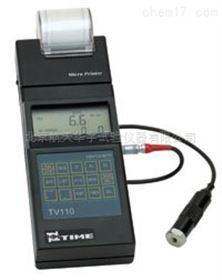 TV110便攜式測振儀