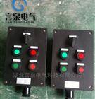 ZXF8044-220V380V紅綠指示防爆防腐控制器