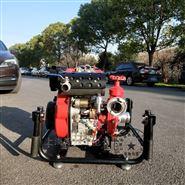 翰丝原装2.5寸移动式消防泵