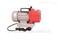 上海雷韵仪器//旋片真空泵