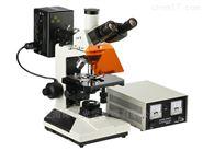 正置荧光显微镜CFM-500