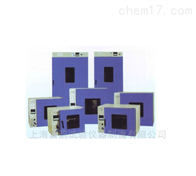 DHG-9620A雷韵仪器 --DHG-9620A电热鼓风干燥箱