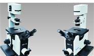 XDS-1B高性價比經典重光倒置生物顯微鏡