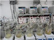 1L厌氧发酵罐 沼气罐 甲烷气体在线检测