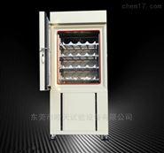 塑料扎带高低温交变试验箱