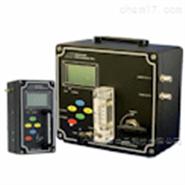 GPR-12-333-美国AII氧气分析仪