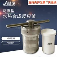 微型高溫高壓反應釜