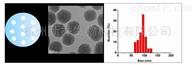 介孔氧化硅纳米颗粒 100-500纳米