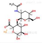 透明质酸钠原料|9067-32-7|优质日化洗护