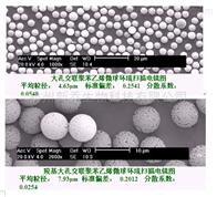 聚苯乙烯磁性微球氨基聚苯乙烯磁性微球 氨基化13um  5mg/ml