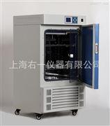 LRH-100CL低温培养箱 低温保存箱