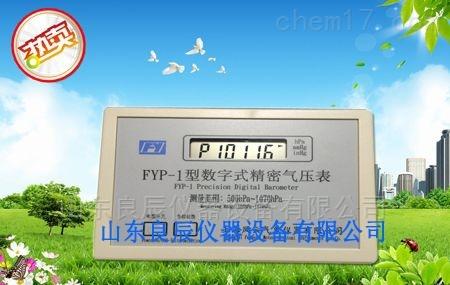 风云牌FYP-1数字精密气压表B级