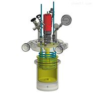 ChemTron NR-3000中压反应釜