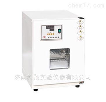 电热恒温恒温箱微生物细菌培养箱