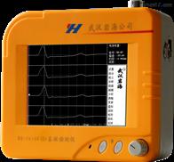 RS-1616K(S)高低应变基桩动测仪