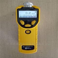 PGM-7320黃色外殼美國華瑞VOC檢測儀PGM-7320
